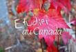 cs-etudier-au-canada